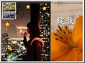 2010『秋日楓菊趣景點大募集!』:[lillianc] 秋夜-凝望夜景