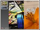 2010『秋日楓菊趣景點大募集!』:[bertha_wj] 123