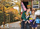 2010『秋日楓菊趣景點大募集!』:[lillianc] 秋天旅遊