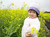 「愛現花遊記」投稿相簿:[ww555g] 媽咪~這朵油菜花送給您!