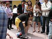 更多狗狗徵婚派對全程實錄:P1000149