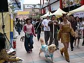 更多狗狗徵婚派對全程實錄:P1000156