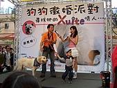 狗狗徵婚派對(20060311):100_0924
