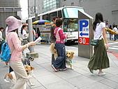 更多狗狗徵婚派對全程實錄:SANY0272