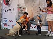 狗狗徵婚派對(20060311):100_0926