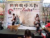 狗狗徵婚派對(20060311):100_0916