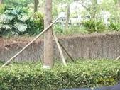 快樂的日子:1010408動物園 024.jpg