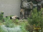 快樂的日子:1010408動物園 025.jpg