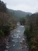 武陵櫻花雨:Chi-Chia-Wan Creek 七家灣溪01.JPG