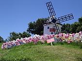 2007清境風車節:P20070722184