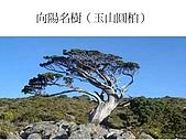 南二段縱走投影片(林淑敏製作):投影片15.JPG
