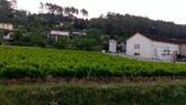 provence遊記:Le Thoronet