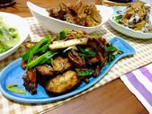中式魚類料理:沙茶魚塊 (9).jpg
