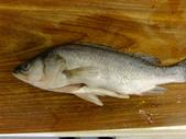 南洋魚類料理:印度風南瓜魚肉咖哩 (1).jpg