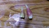 西式魚類料理:IMAG0906.jpg