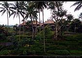 峇里島自由行 - Day 3:DSC_0525.jpg