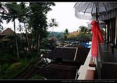 峇里島自由行 - Day 3:DSC_0526.jpg