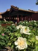 2016年4月訪歐洲43天-北京:IMG_2158+.jpg