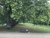 英國-海得堡公園:IMG_3549.JPG