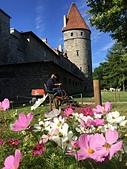 愛沙尼亞 塔林 Tallinn 第二天:IMG_0006.JPG