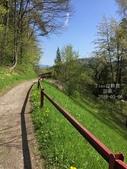 歐洲43天-奧地利-山岳鐵路:IMG_4133_副本.jpg