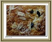 義大利黃金麵包 水果麵包 :X 034