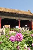 2016年4月訪歐洲43天-北京:DSC_6643+.jpg