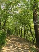訪歐43天-布拉格-佩特辛山:IMG_3841_副本.jpg