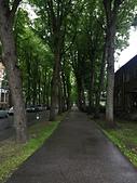 愛沙尼亞 Pärnu 派爾努縣  :IMG_9477.JPG