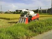 農機與我的田園生活:1574597081.jpg