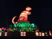 2008年2月28日 - 台南燈會:1160814484.jpg