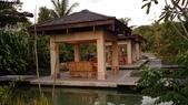 我在帛琉當老爺:DSC_2305.jpg