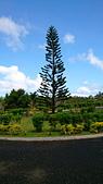 我在帛琉新首都:DSC_1935.jpg