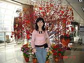 再次造訪香港:DSC00694