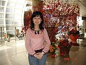 再次造訪香港:DSC00695