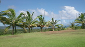 我在帛琉新首都:DSC_1931.jpg
