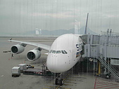 新航A380在HKIA:DSC01915.jpg
