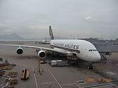 新航A380在HKIA:R0011313.jpg