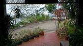 我在帛琉Rose Garden:DSC_2247.jpg