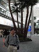 再次造訪香港:DSC00690
