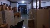 我在帛琉工作緊湊:DSC_1512.jpg