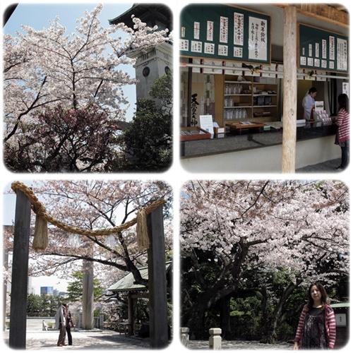 2012。Japan Trip。Tokyo:0412006a.jpg
