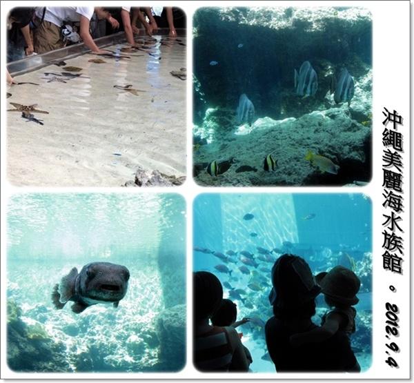 沖繩五天四夜家庭自助旅:0904d08.jpg