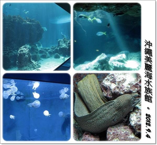 沖繩五天四夜家庭自助旅:0904d10.jpg