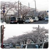 2012。Japan Trip。Tokyo:0409008a.jpg