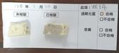 107-1每日食材檢驗:1080110板豆腐快篩