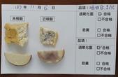 107-1每日食材檢驗:1071105三角油腐.素雞快篩