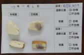 107-1每日食材檢驗:1071106板豆腐.四方乾快篩