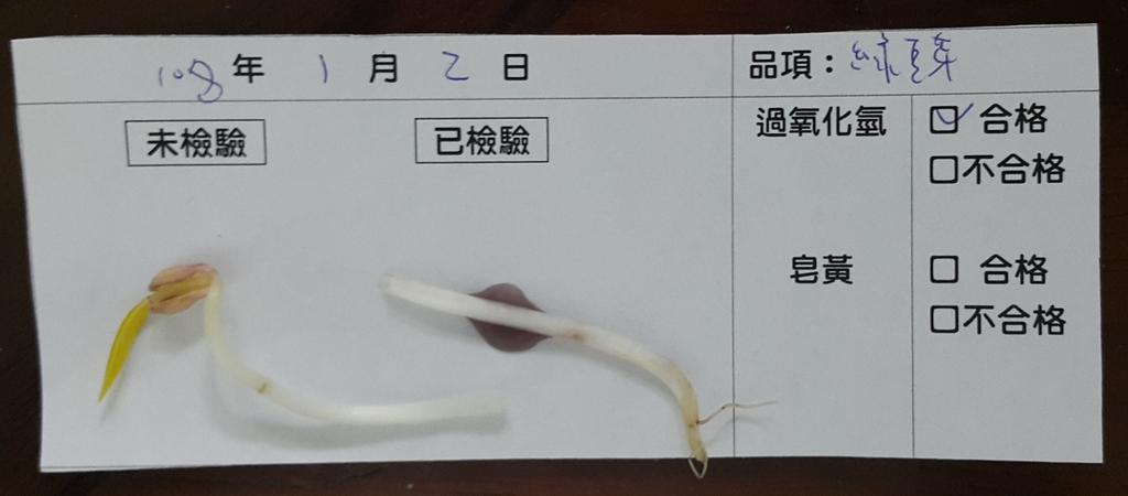 107-1每日食材檢驗:1080102綠豆芽快篩