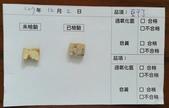 107-1每日食材檢驗:1071002豆乾丁快篩